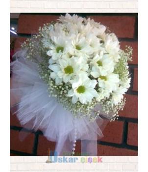Papatya Gelineli Çiçeği