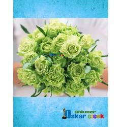 Gelineli Çiçeği